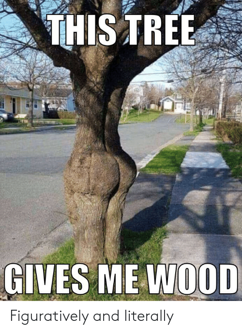 figuratively: THIS TREE  GIVES ME WOOD Figuratively and literally