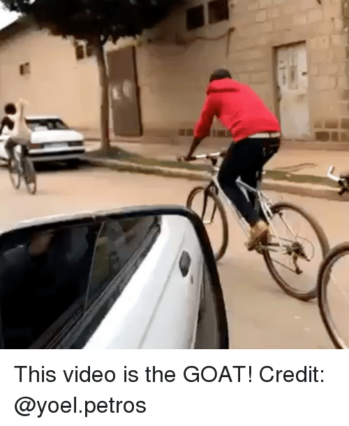 Memes, Goat, and Video: This video is the GOAT! Credit: @yoel.petros