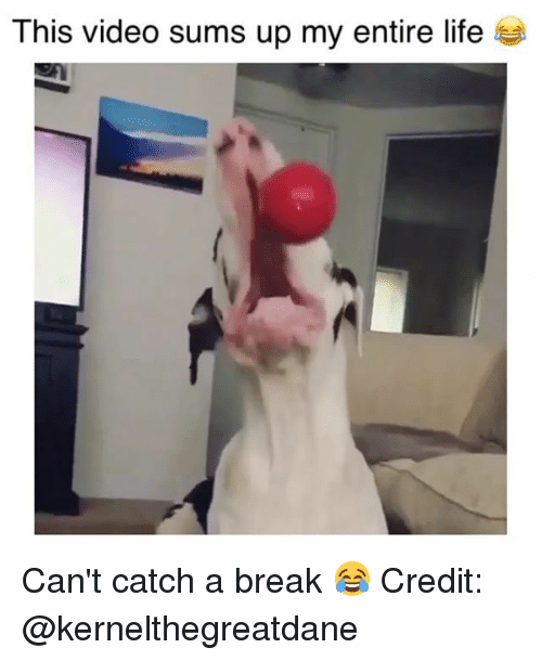25 Best Memes About Cant Catch A Break Cant Catch A