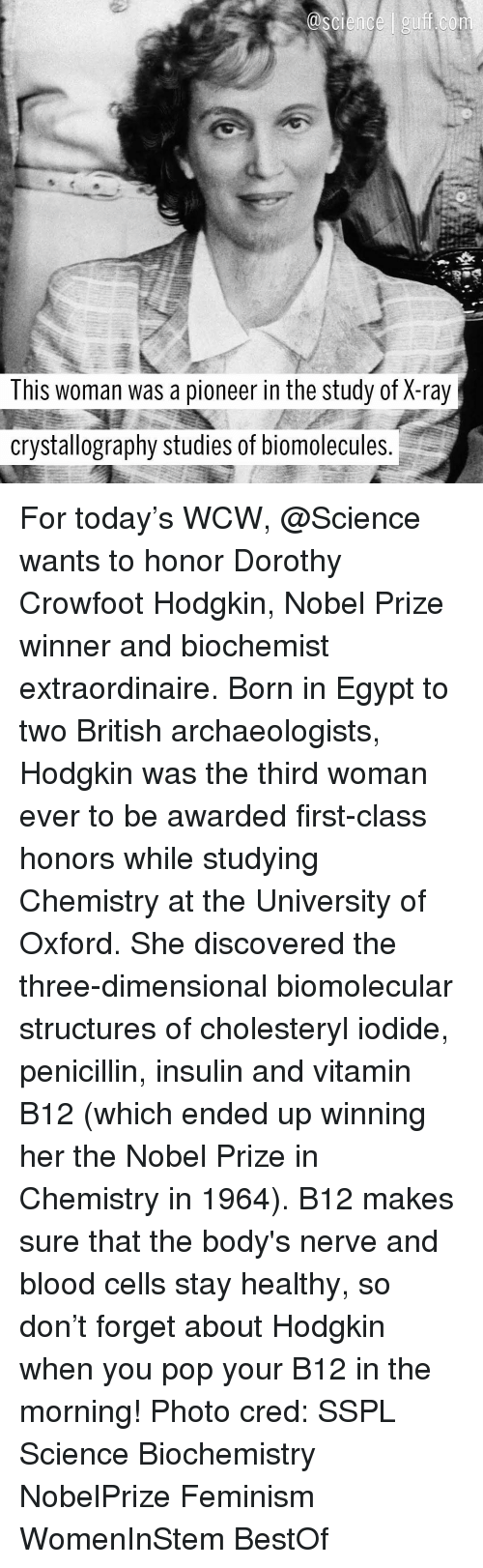 Femination: This woman was a pioneer in the study of X-ray  crystallography studies of biomolecules For today's WCW, @Science wants to honor Dorothy Crowfoot Hodgkin, Nobel Prize winner and biochemist extraordinaire. Born in Egypt to two British archaeologists, Hodgkin was the third woman ever to be awarded first-class honors while studying Chemistry at the University of Oxford. She discovered the three-dimensional biomolecular structures of cholesteryl iodide, penicillin, insulin and vitamin B12 (which ended up winning her the Nobel Prize in Chemistry in 1964). B12 makes sure that the body's nerve and blood cells stay healthy, so don't forget about Hodgkin when you pop your B12 in the morning! Photo cred: SSPL Science Biochemistry NobelPrize Feminism WomenInStem BestOf