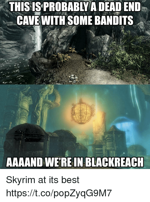 Skyrim, Best, and Cave: THISIS  PROBABLY  A  DEAD  END  CAVE WITH SOME BANDITS  AAAAND WEREIN BLACKREACH Skyrim at its best https://t.co/popZyqG9M7