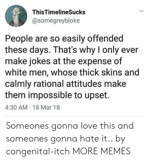 Dank, Love, and Memes: ThisTimelineSucks  @somegreybloke  People are so easily offended  these days. That's why I only ever  make jokes at the expense of  white men, whose thick skins and  calmly rational attitudes make  them impossible to upset.  4:30 AM 18 Mar 18 Someones gonna love this and someones gonna hate it.. by congenital-itch MORE MEMES