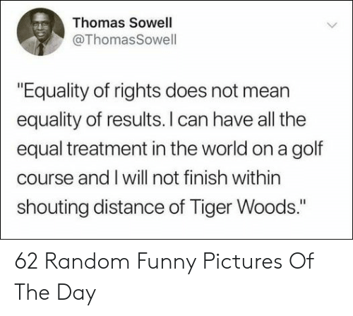 """shouting: Thomas Sowell  @ThomasSowell  """"Equality of rights does not mean  equality of results. I can have all the  equal treatment in the world on a golf  course and I will not finish within  shouting distance of Tiger Woods."""" 62 Random Funny Pictures Of The Day"""