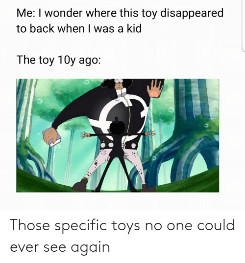 Toys: Those specific toys no one could ever see again