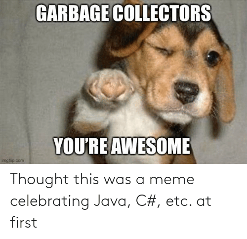 Java: Thought this was a meme celebrating Java, C#, etc. at first