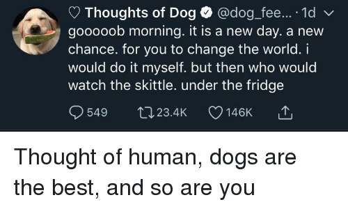Dogs, Best, and Watch: Thoughts of Dog @dog fee.... 1d  gooooob morning. it is a new day. a new  chance. for you to change the world. i  would do it myself. but then who would  watch the skittle. under the fridge  549 t023.4K 146K Thought of human, dogs are the best, and so are you
