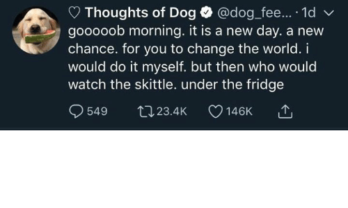 Watch, World, and Change: Thoughts of Dog @dog fee... 1d  gooooob morning. it is a new day. a new  chance. for you to change the world. i  would do it myself. but then who would  watch the skittle. under the fridge  549 tJ23.4K 146K