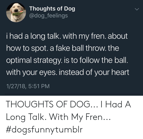 Fake, Heart, and How To: Thoughts of Dog  @dog_feelings  i had a long talk. with my fren. about  how to spot. a fake ball throw. the  optimal strategy. is to follow the ball  with your eyes. instead of your heart  1/27/18, 5:51 PM THOUGHTS OF DOG... I Had A Long Talk. With My Fren... #dogsfunnytumblr