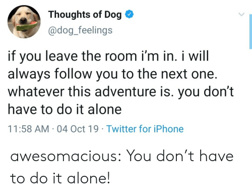 Being Alone, Iphone, and Tumblr: Thoughts of Dog  @dog_feelings  if you  always follow you to the next one.  whatever this adventure is. you don't  leave the room i'm in. i will  have to do it alone  11:58 AM 04 Oct 19 Twitter for iPhone awesomacious:  You don't have to do it alone!