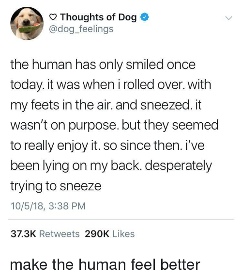 feets: Thoughts of Dog  @dog_feelings  the human has only smiled once  today. it was when i rolled over. with  my feets in the air. and sneezed. it  wasn't on purpose. but they seemed  to really enjoy it. so since then. i've  been lying on my back. desperately  trying to sneeze  10/5/18, 3:38 PM  37.3K Retweets 290K Likes make the human feel better