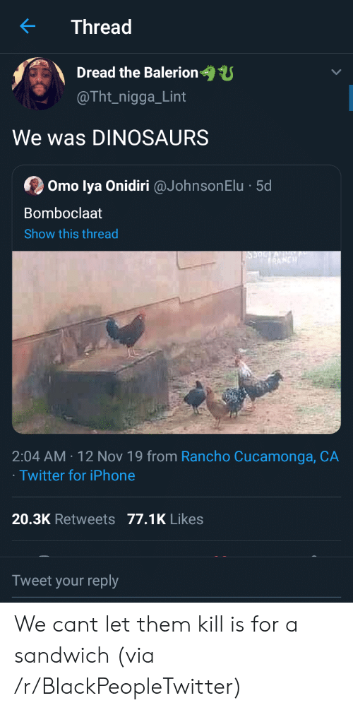 Blackpeopletwitter, Iphone, and Twitter: Thread  Dread the Balerion  @Tht_nigga_Lint  We was DINOSAURS  Omo lya Onidiri @JohnsonElu 5d  Bomboclaat  Show this thread  RANCH  2:04 AM 12 Nov 19 from Rancho Cucamonga, CA  Twitter for iPhone  20.3K Retweets 77.1K Likes  Tweet your reply We cant let them kill is for a sandwich (via /r/BlackPeopleTwitter)