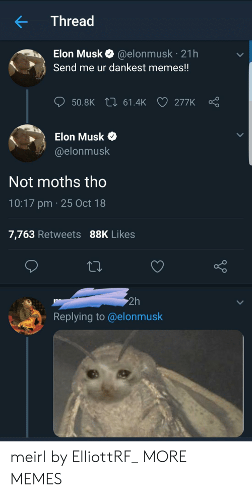 Dankest Memes: Thread  Elon Musk @elonmusk 21h  Send me ur dankest memes!!  ס50.BK 61.4k 277K Ç  Elon Musk  @elonmusk  Not moths tho  10:17 pm 25 Oct 18  7,763 Retweets 88K Likes  2h  Replying to@elonmusk meirl by ElliottRF_ MORE MEMES