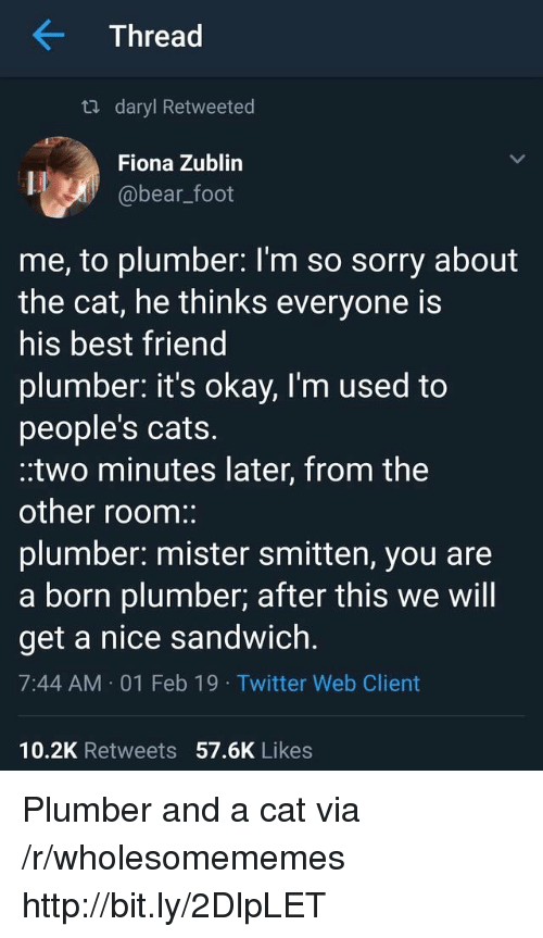plumber: Thread  ta daryl Retweeted  Fiona Zublin  @bear_foot  me, to plumber: l'm so sorry about  the cat, he thinks everyone is  his best friend  plumber. it's okay, I'm used to  people's cats.  .two minutes later, from the  other room:  plumber: mister smitten, you are  a born plumber; after this we will  get a nice sandwich.  7:44 AM 01 Feb 19 Twitter Web Client  10.2K Retweets 57.6K Likes Plumber and a cat via /r/wholesomememes http://bit.ly/2DlpLET