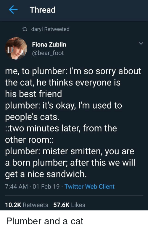 plumber: Thread  ta daryl Retweeted  Fiona Zublin  @bear_foot  me, to plumber: l'm so sorry about  the cat, he thinks everyone is  his best friend  plumber. it's okay, I'm used to  people's cats.  .two minutes later, from the  other room:  plumber: mister smitten, you are  a born plumber; after this we will  get a nice sandwich.  7:44 AM 01 Feb 19 Twitter Web Client  10.2K Retweets 57.6K Likes Plumber and a cat