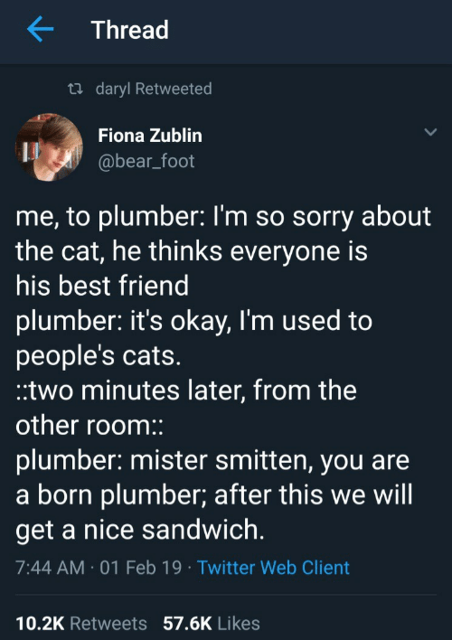 plumber: Thread  ti daryl Retweeted  Fiona Zublin  @bear_foot  me, to plumber: l'm so sorry about  the cat, he thinks everyone is  his best friend  plumber: it's okay, I'm used to  people's cats  two minutes later, from the  other room::  plumber: mister smitten, you are  a born plumber; after this we will  get a nice sandwich  7:44 AM 01 Feb 19 Twitter Web Client  10.2K Retweets 57.6K Likes