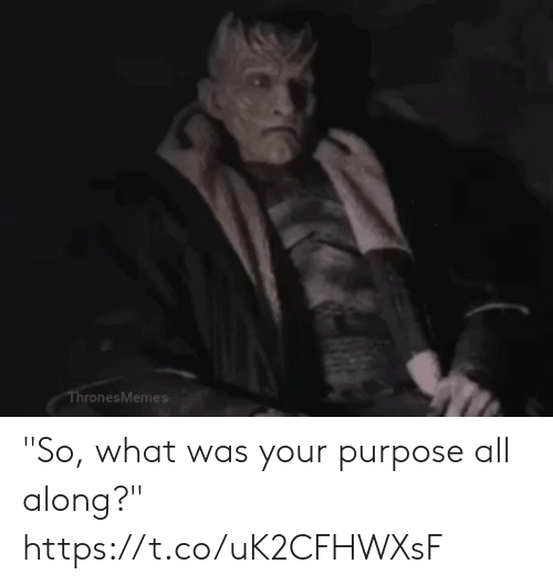 "Memes, 🤖, and All: ThronesMemes ""So, what was your purpose all along?"" https://t.co/uK2CFHWXsF"