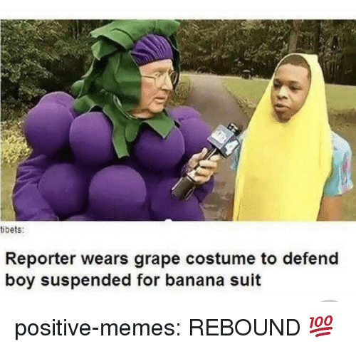 Memes, Tumblr, and Banana: tibets:  Reporter wears grape costume to defend  boy suspended for banana suit positive-memes:  REBOUND 💯