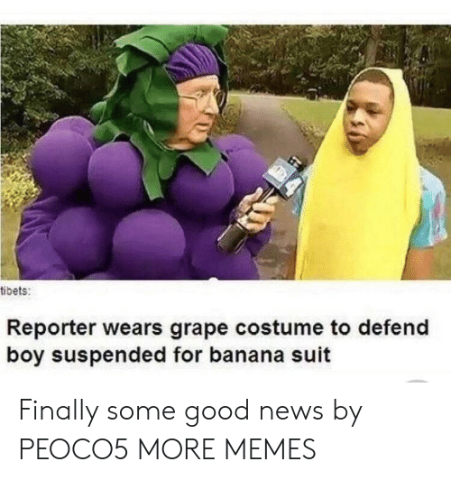 Dank, Memes, and News: tibets:  Reporter wears grape costume to defend  boy suspended for banana suit Finally some good news by PEOCO5 MORE MEMES