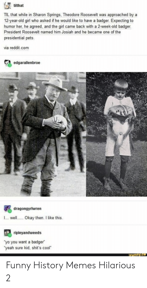 Funny, Memes, and Reddit: tilthat  TIL that while in Sharon Springs, Theodore Roosevelt was approached by a  12-year-old girl who asked if he would like to have a badger. Expecting to  humor her, he agreed, and the girl came back with a 2-week-old badger  President Roosevelt named him Josiah and he became one of the  presidential pets  via reddit.com  edgarallenbroe  dragongyrlwren  .well  Okay then. I like this.  ripleyandweeds  yo you want a badger  'yeah sure kid, shit's cool  ifunny.co Funny History Memes Hilarious 2