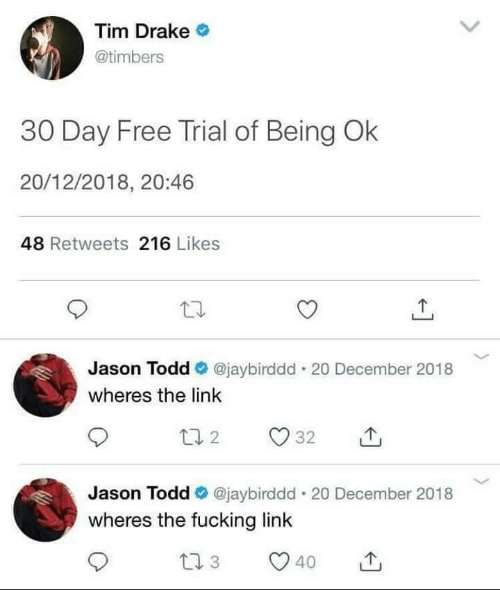 todd: Tim Drake  @timbers  30 Day Free Trial of Being Ok  20/12/2018, 20:46  48 Retweets 216 Likes  Jason Todd @jaybirddd . 20 December 2018  wheres the link  Jason Todd @jaybirddd-20 December 2018  wheres the fucking link  40