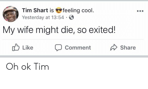 Reddit, Cool, and Wife: Tim Shart is feeling cool  Yesterday at 13:54  My wife might die, so exited!  Like  Share  Comment Oh ok Tim