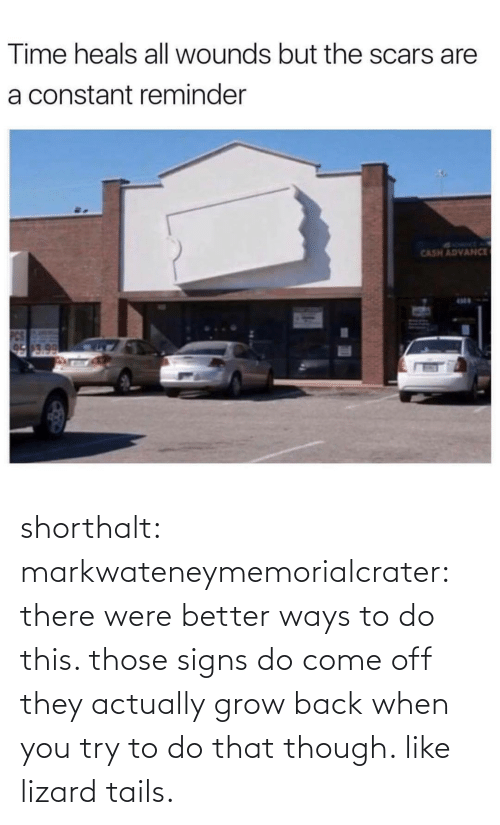 those: Time heals all wounds but the scars are  a constant reminder  SYRMT A  CASH ADVANCE  17.0 shorthalt: markwateneymemorialcrater:  there were better ways to do this. those signs do come off   they actually grow back when you try to do that though. like lizard tails.