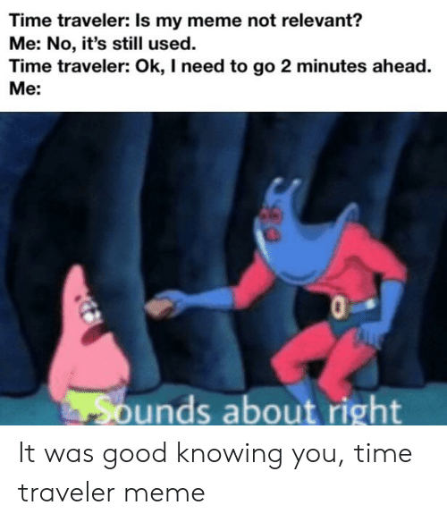 Time Traveler Is My Meme Not Relevant? Me No It's Still Used