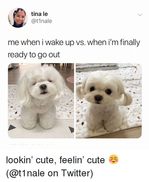 Cute, Memes, and Twitter: tina le  @t1nale  me when i wake up vs. when i'm finally  ready to go out lookin' cute, feelin' cute ☺️ (@t1nale on Twitter)