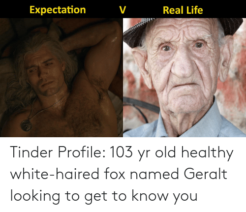 fox: Tinder Profile: 103 yr old healthy white-haired fox named Geralt looking to get to know you