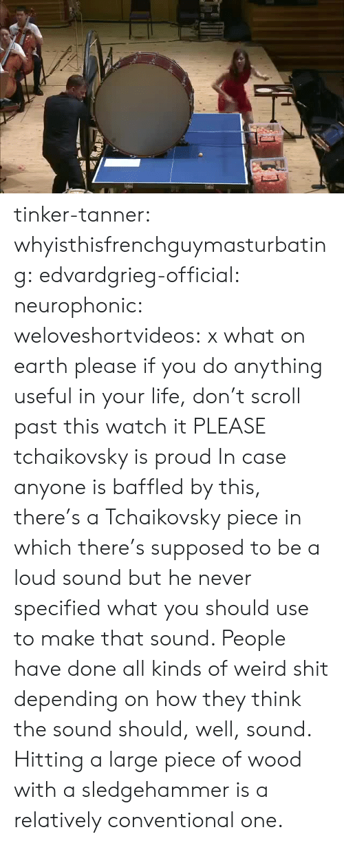Life, Shit, and Tumblr: tinker-tanner:   whyisthisfrenchguymasturbating:  edvardgrieg-official:  neurophonic:  weloveshortvideos:  x  what on earth  please if you do anything useful in your life, don't scroll past this watch it PLEASE   tchaikovsky is proud   In case anyone is baffled by this, there's a Tchaikovsky piece in which there's supposed to be a loud sound but he never specified what you should use to make that sound. People have done all kinds of weird shit depending on how they think the sound should, well, sound. Hitting a large piece of wood with a sledgehammer is a relatively conventional one.