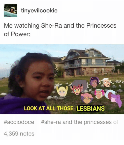 Lesbians, Power, and She-Ra: tinyevilcookie  Me watching She-Ra and the Princesses  of Power  LOOK AT ALL THOSE LESBIANS  #acciodoce  #she-ra and the princesses of  4,359 notes