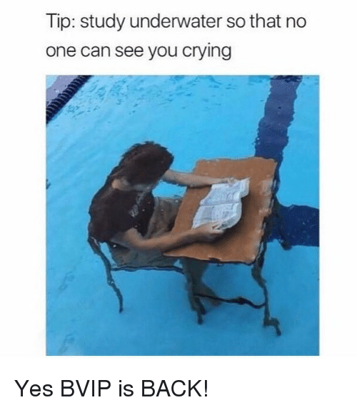 Crying, Memes, and Back: Tip: study underwater so that no  one can see you crying  0 Yes BVIP is BACK!