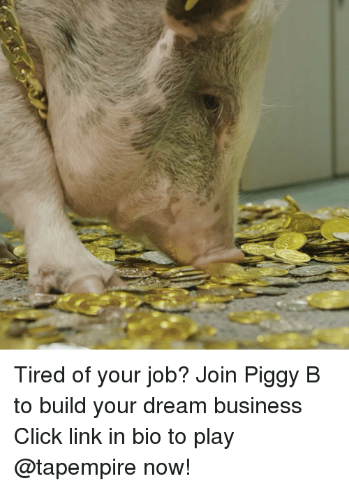 Click, Memes, and Business: Tired of your job? Join Piggy B to build your dream business Click link in bio to play @tapempire now!