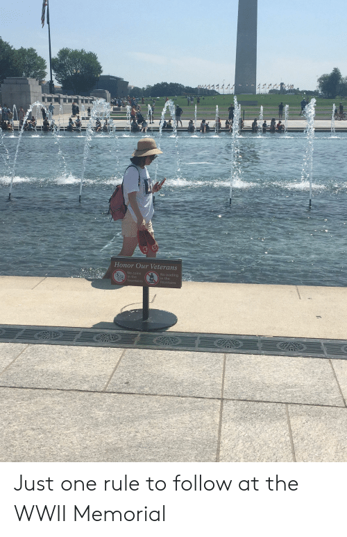 Trashy, Wwii, and One: TN  Honor Our Veterans Just one rule to follow at the WWII Memorial
