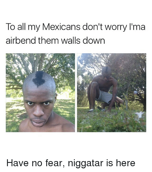 Funny, Memes, and Mexican: To all my Mexicans don't worry l'ma  air bend them walls down Have no fear, niggatar is here