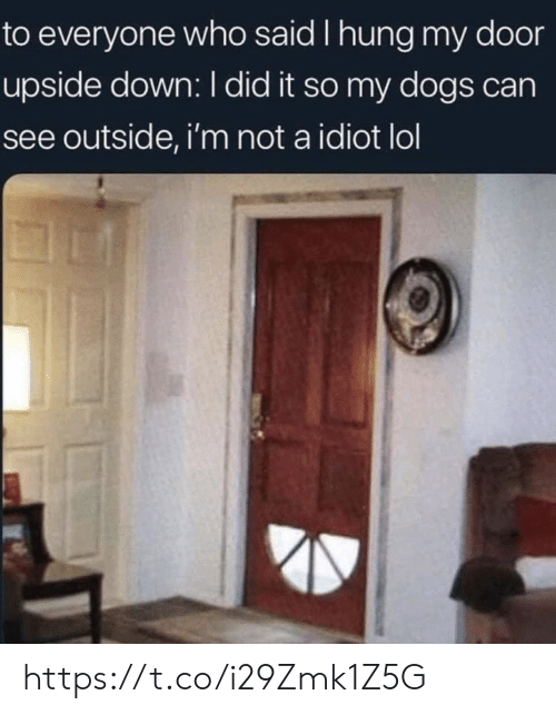 hung: to everyone who said I hung my door  upside down: I did it so my dogs can  see outside, i'm not a idiot lol https://t.co/i29Zmk1Z5G