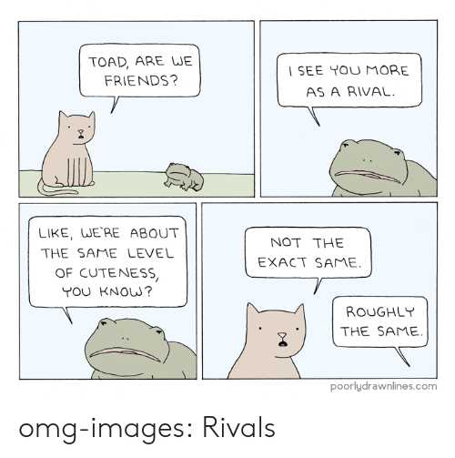 Friends, Omg, and Tumblr: TOAD, ARE WE  FRIENDS?  SEE YOU MORE  AS A RIVAL.  LIKE, WERE ABOUT  THE SAME LEVEL  OF CUTENESS  YOU KNOw?  NOT THE  EXACT SAME.  ROUGHLY  THE SAME  poorlydrawnlines.com omg-images:  Rivals