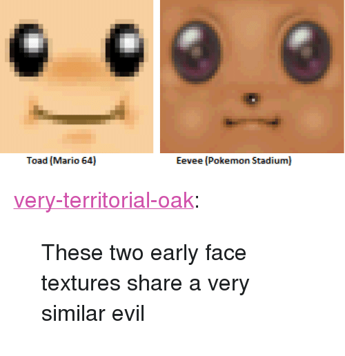 "Pokemon, Tumblr, and Mario: Toad Mario 64  Eevee (Pokemon Stadium) <p><a href=""http://very-territorial-oak.tumblr.com/post/168775988525/these-two-early-face-textures-share-a-very-similar"" class=""tumblr_blog"">very-territorial-oak</a>:</p><blockquote><p>These two early face textures share a very similar evil</p></blockquote>"