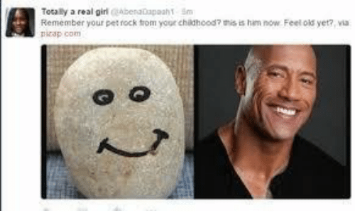Old, Rock, and Him: Tocaly a real giri beraDapaah T m  Remember your pet rock trom your chidhood7 this is him now Feel old yet?, via