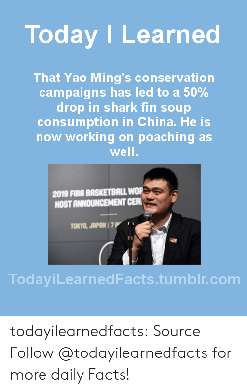 Upworthy: Today ILearned  That Yao Ming's conservation  campaigns has led to a 50%  drop in shark fin soup  consumption in China. He is  now working on poaching as  well  2019 FIBA BASKETBALL WOR  HOST ANNOUNCEMENT CER  TOKYO, JAPAN 1 7  TodayiLearnedFacts.tumblr.com todayilearnedfacts: Source Follow @todayilearnedfacts​ for more daily Facts!
