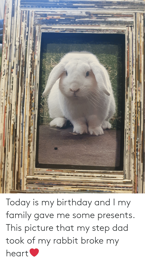Gave: Today is my birthday and I my family gave me some presents. This picture that my step dad took of my rabbit broke my heart❤