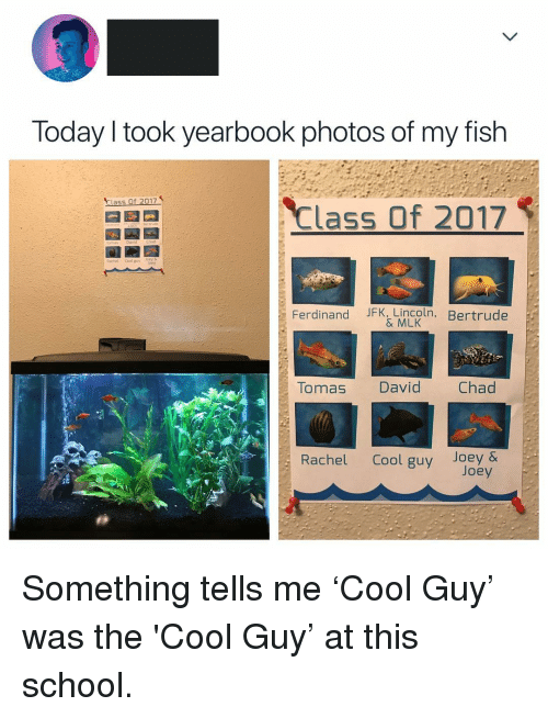 My Fish: Today l took yearbook photos of my fish  Class Of 2017  Class of 2017  Rachel Cool guvlory  Ferdinand JFK, Lincoln  , Bertrude  & MLK  Tauas David Chad  Rachel Cool guy Joey & <p>Something tells me &lsquo;Cool Guy&rsquo; was the 'Cool Guy&rsquo; at this school.</p>