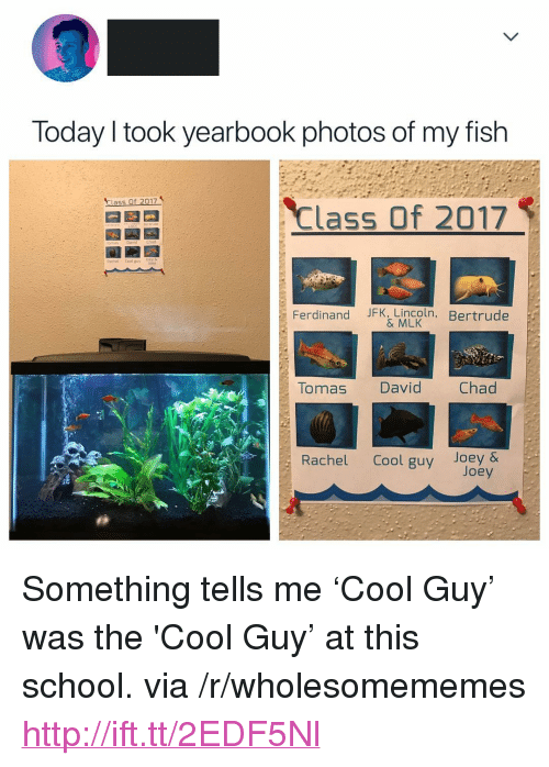"My Fish: Today l took yearbook photos of my fish  Class Of 2017  Class of 2017  Rachel Cool guvlory  Ferdinand JFK, Lincoln  , Bertrude  & MLK  Tauas David Chad  Rachel Cool guy Joey & <p>Something tells me &lsquo;Cool Guy&rsquo; was the 'Cool Guy&rsquo; at this school. via /r/wholesomememes <a href=""http://ift.tt/2EDF5Nl"">http://ift.tt/2EDF5Nl</a></p>"