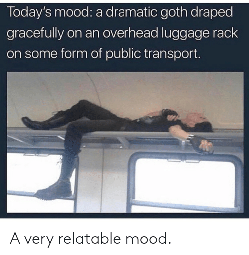 Mood, Luggage, and Relatable: Today's mood: a dramatic goth draped  gracefully on an overhead luggage rack  on some form of public transport A very relatable mood.
