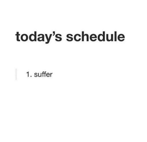 Schedule, Suffer, and Todays: today's schedule  1. suffer
