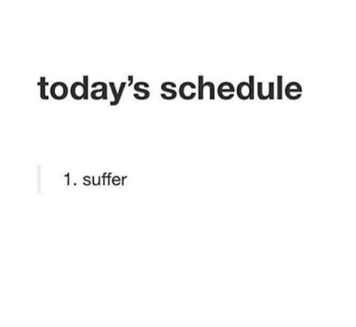 suffer: today's schedule  1. suffer
