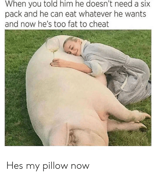 My Pillow, Fat, and Him: told  him  he  need  When you doesn't a six  pack and he can eat whatever he wants  and now he's too fat to cheat Hes my pillow now