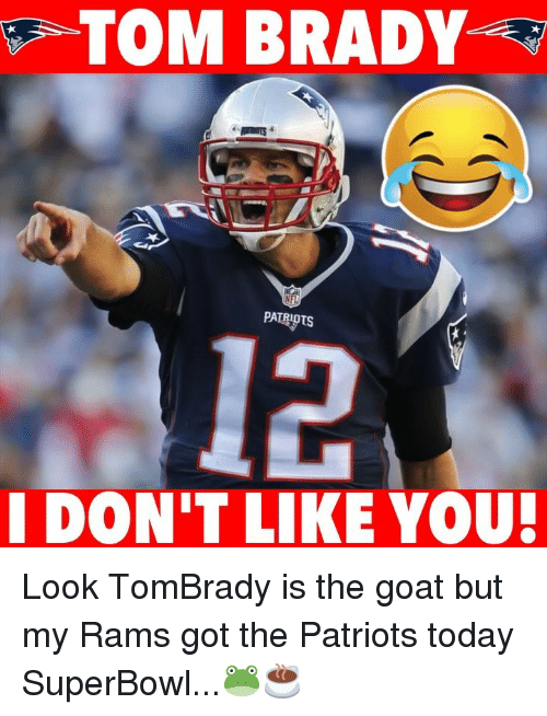 Memes, Patriotic, and Tom Brady: TOM BRADY  I DON'T LIKE YOU Look TomBrady is the goat but my Rams got the Patriots today SuperBowl...🐸☕️