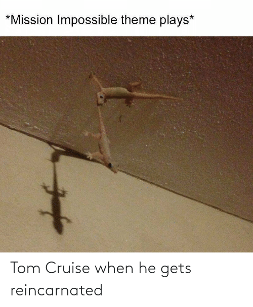 When He: Tom Cruise when he gets reincarnated