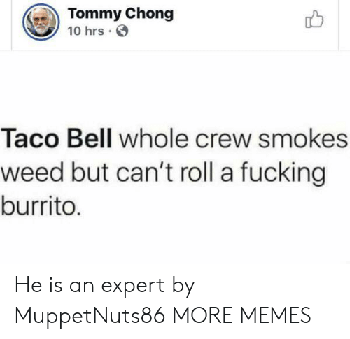 Dank, Fucking, and Memes: Tommy Chong  10 hrs  Taco Bell whole crew smokes  weed but can't roll a fucking  burrito. He is an expert by MuppetNuts86 MORE MEMES